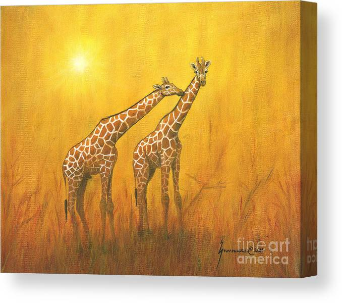 Giraffe Canvas Print featuring the painting The Kiss by Jerome Stumphauzer