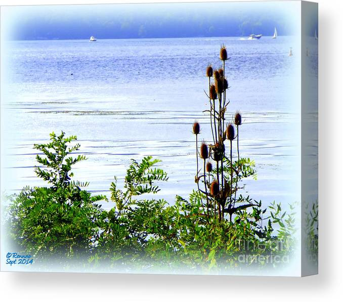 Waterscape Canvas Print featuring the photograph Waters Edge by Rennae Christman