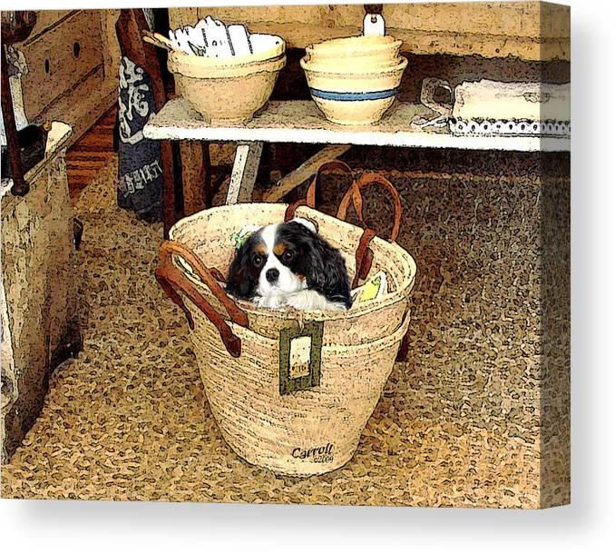 cavalier King Charles Spaniel Canvas Print featuring the digital art Cavalier Puppy in a Basket by Linda Carroll