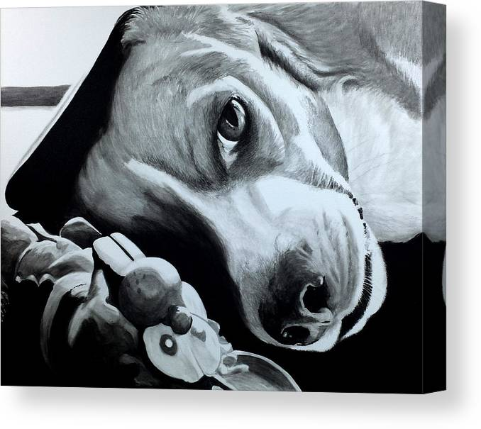 Pet Painting Canvas Print featuring the painting Duffy by Scott Robinson