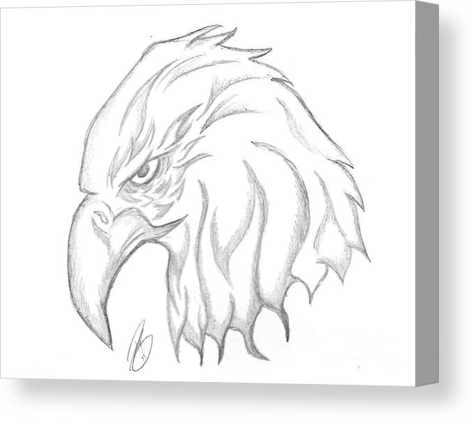 Eagle Head Drawing Canvas Print / Canvas Art by Minding My Visions ...