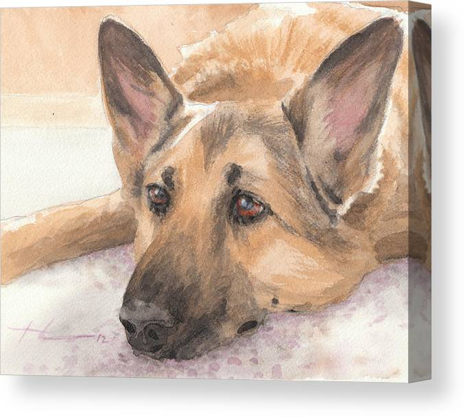<a Href=http://miketheuer.com Target =_blank>www.miketheuer.com</a> German Shepherd Laying Watercolor Portrait Canvas Print featuring the drawing German Shepherd Laying Watercolor Portrait by Mike Theuer