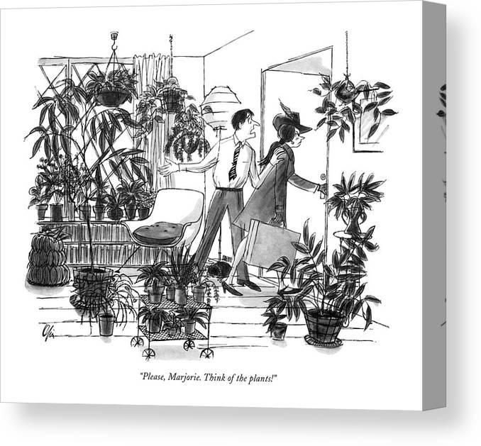 (pleading Husband Canvas Print featuring the drawing Please, Marjorie. Think Of The Plants! by Everett Opie