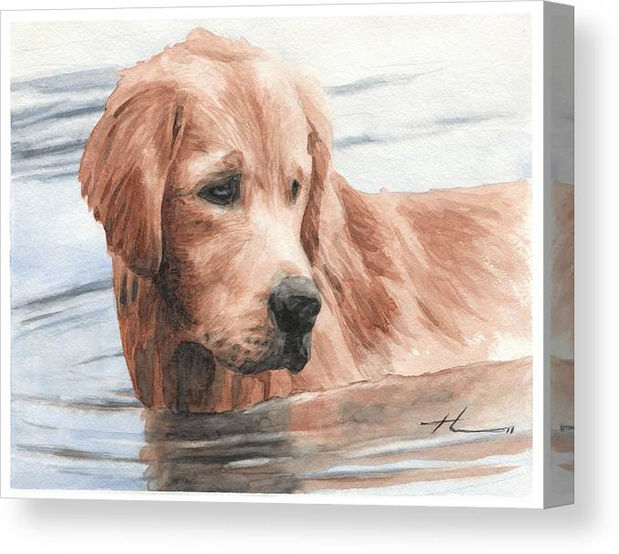 Www.miketheuer.com Setter Dog In Water Watercolor Portrait Canvas Print featuring the drawing Setter Dog In Water Watercolor Portrait by Mike Theuer