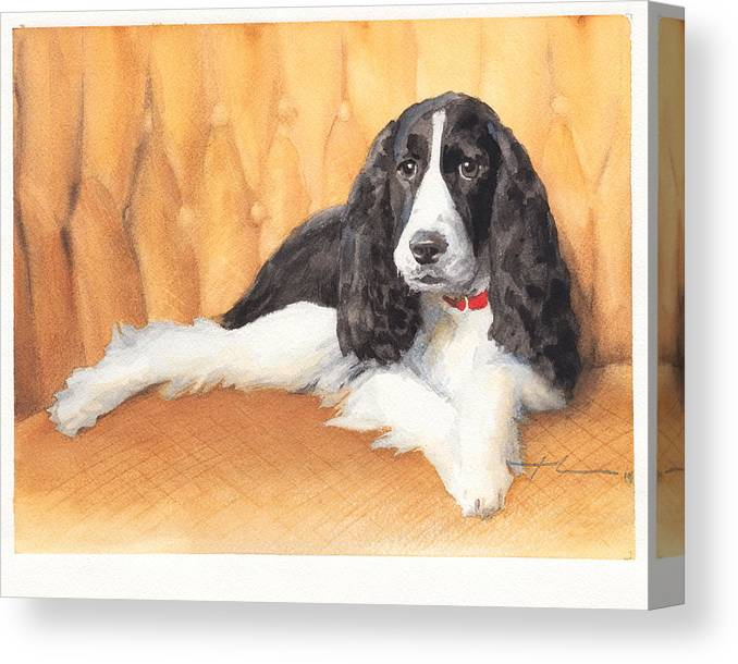 <a Href=http://miketheuer.com Target =_blank>www.miketheuer.com</a> Springer Spaniel Watercolor Portrait Canvas Print featuring the drawing Springer Spaniel Watercolor Portrait by Mike Theuer