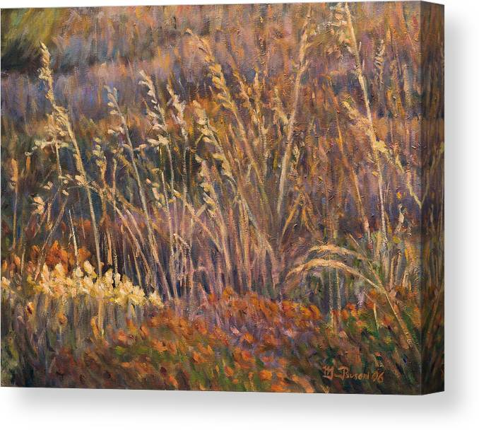 Grass Canvas Print featuring the painting Sunrise reflections on dried grass by Marco Busoni