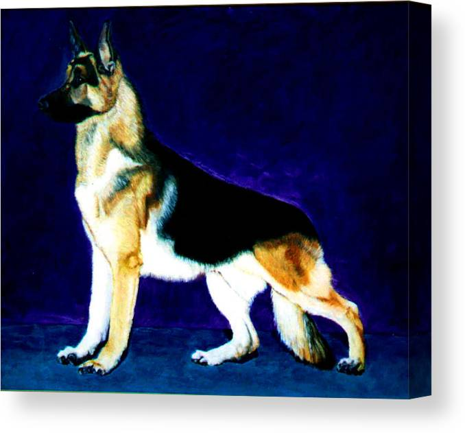 Dog Portrait Canvas Print featuring the painting Champion by Stan Hamilton