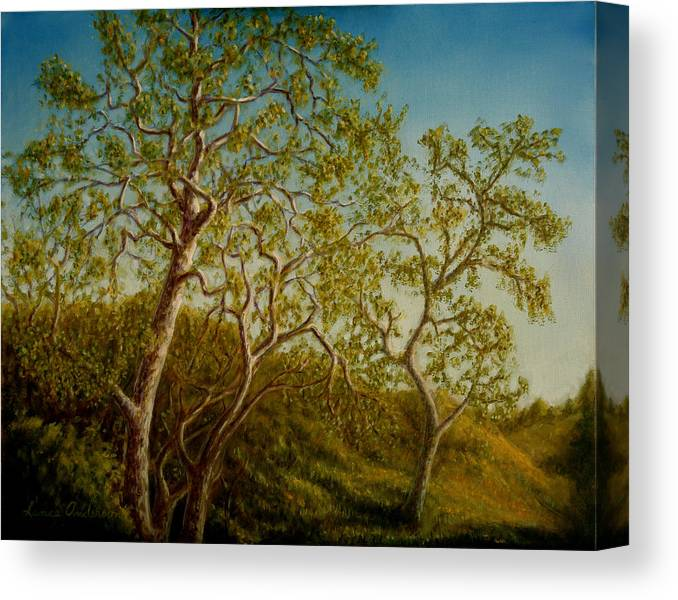 Tree Canvas Print featuring the painting Afternoon Sycamores by Lance Anderson