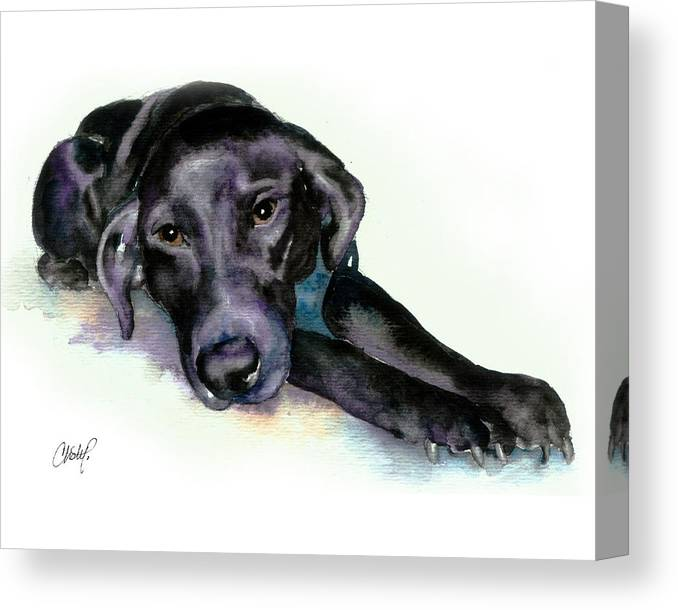 Black Lab Canvas Print featuring the painting Black Lab Stretching out by Christy Freeman Stark