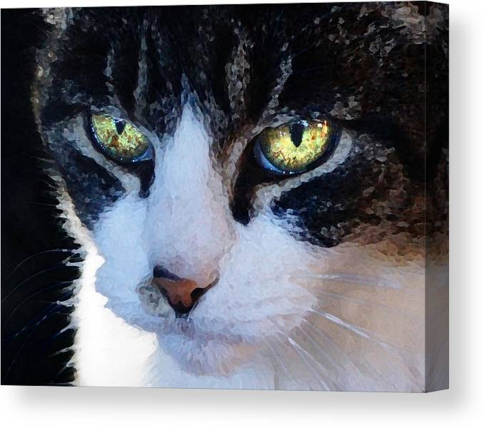 Cat Canvas Print featuring the digital art Cat Eyes by Jana Russon