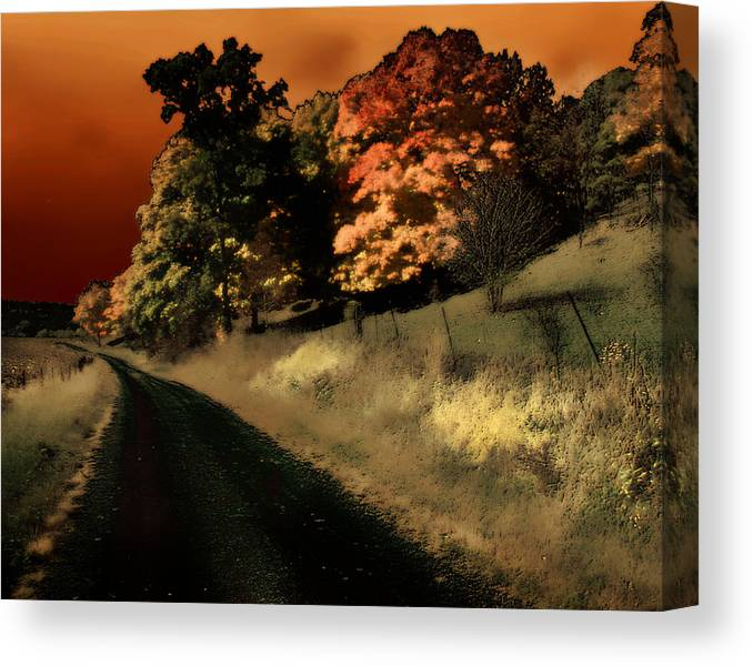 Road Canvas Print featuring the photograph Coles County by Jim Painter