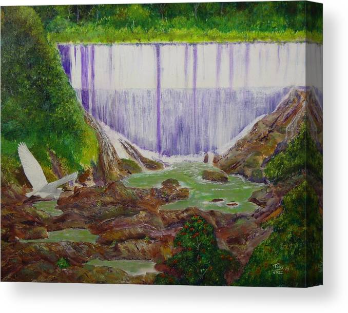 Snowy Egret Canvas Print featuring the painting Comerio Dam by Tony Rodriguez