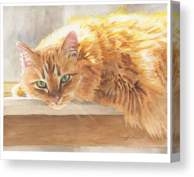 Www.miketheuer.com Orange Maine Coon Cat Watercolor Portrait Canvas Print featuring the painting Long-hair Cat by Mike Theuer
