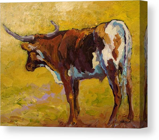 Longhorn Canvas Print featuring the painting Longhorn Study by Marion Rose