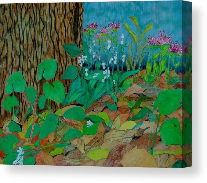 Tree Canvas Print featuring the mixed media Six in hiding by Charla Van Vlack
