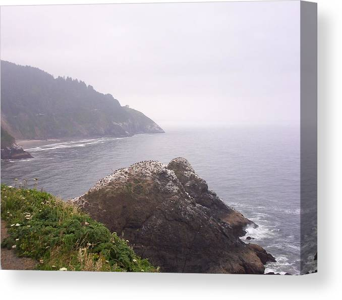 Ocean Canvas Print featuring the photograph Stormy day by J Bauer