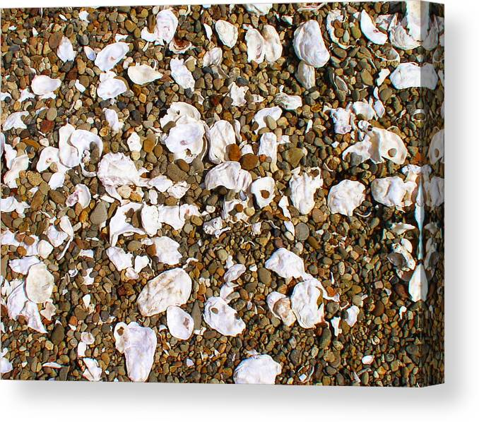 Shells Canvas Print featuring the photograph Towano Pebbles by Valerie Josi