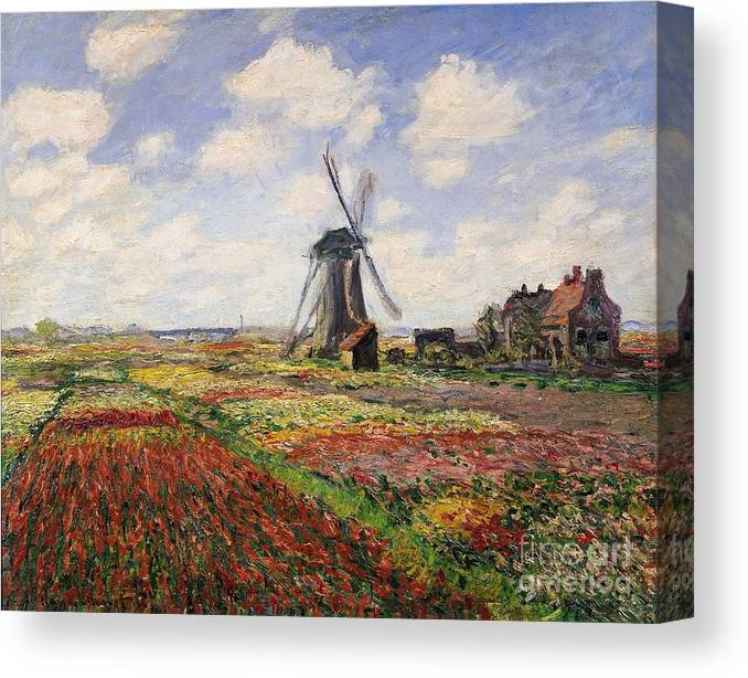 Claude Monet Canvas Print featuring the painting Tulip Fields with the Rijnsburg Windmill by Claude Monet