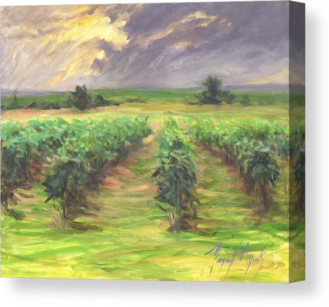 Vinyard Canvas Print featuring the painting Vinyard by Margaret Aycock