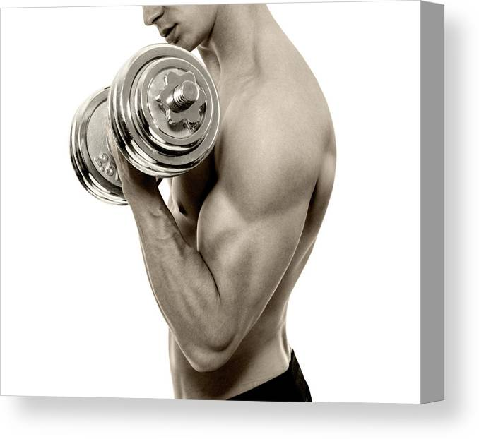 Young Men Canvas Print featuring the photograph Body Builder Exercising by Gilaxia