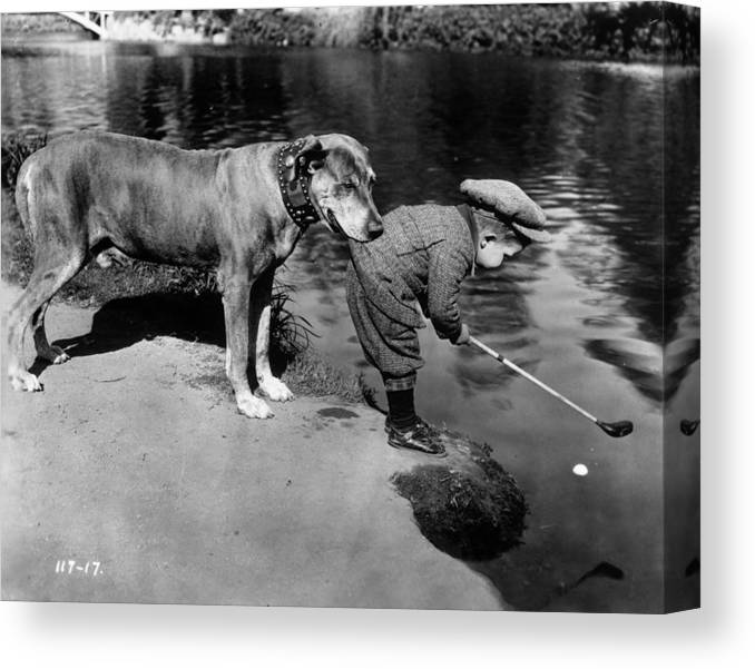 Recreational Pursuit Canvas Print featuring the photograph Helpful Dog by General Photographic Agency