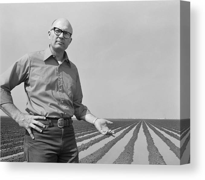 Mature Adult Canvas Print featuring the photograph Mature Man Gesturing At Ploughed Field by Tom Kelley Archive
