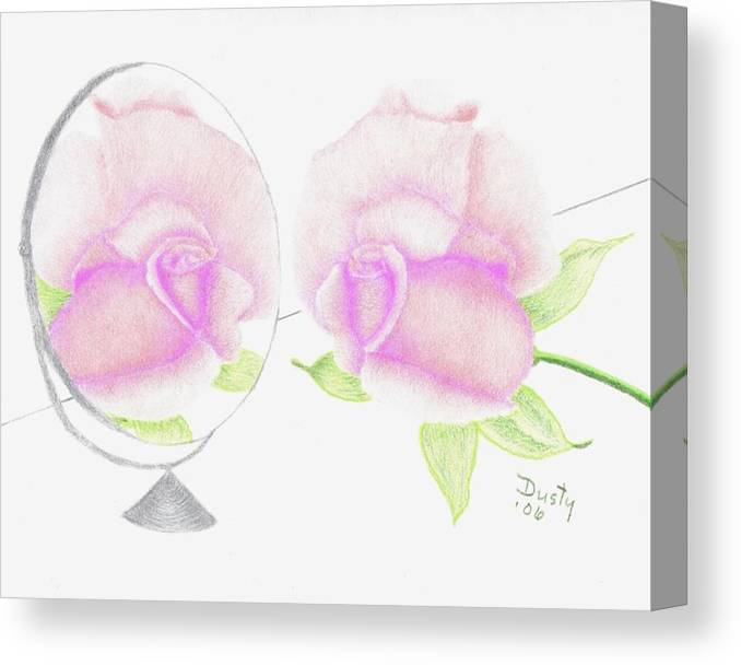 Rose Canvas Print featuring the drawing Pink Reflection by Dusty Reed