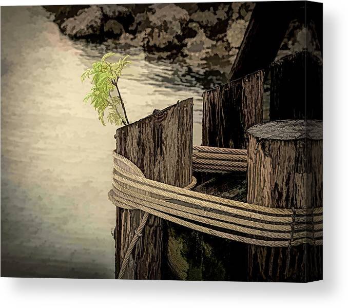 Dock Canvas Print featuring the photograph Tenacious by Lindsay Thomson