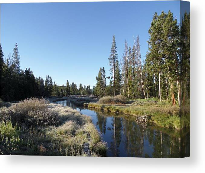 Blue Canvas Print featuring the photograph A Frosty Morning Along Obsidian Creek by Frank Madia