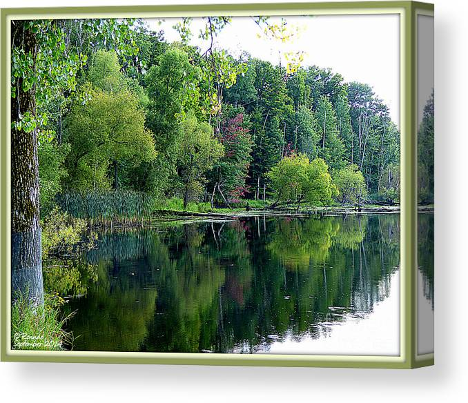 Landscape Canvas Print featuring the photograph Almost Fall by Rennae Christman