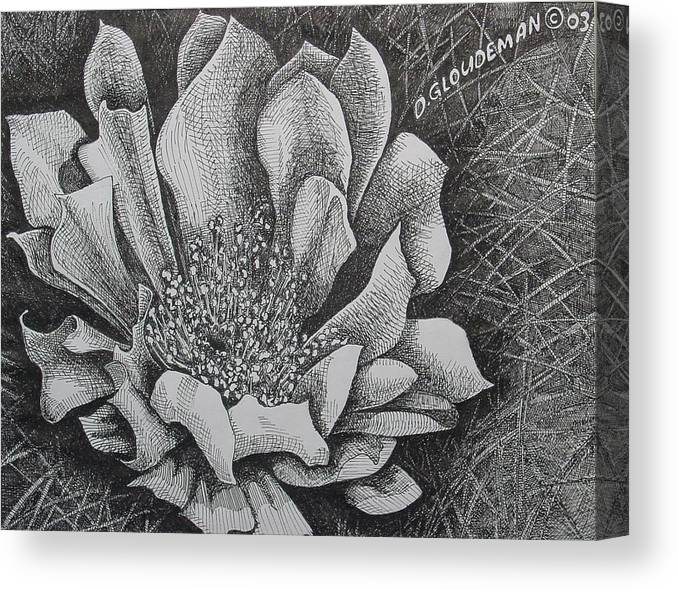 Flowers Canvas Print featuring the drawing Cactus Flower by Denis Gloudeman