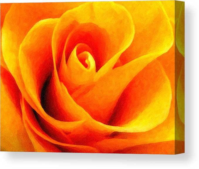 Flower Canvas Print featuring the photograph Golden Rose - Digital Painting Effect by Rhonda Barrett