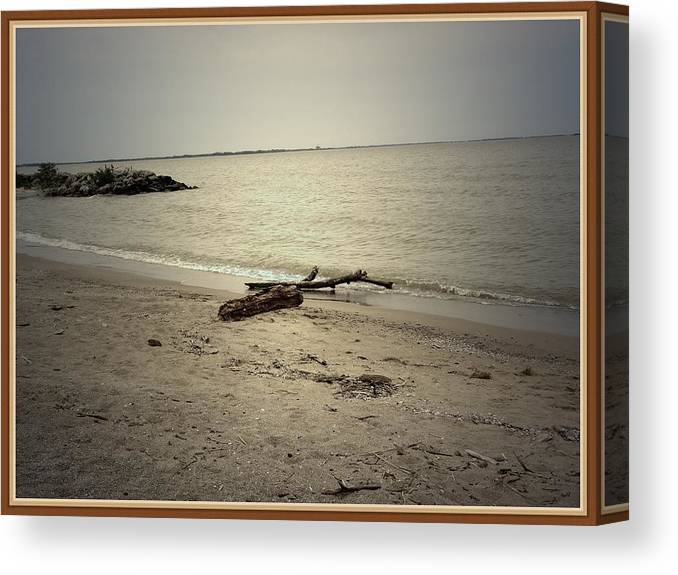 Sea Canvas Print featuring the photograph Lonely Seashore by Anandi Godse