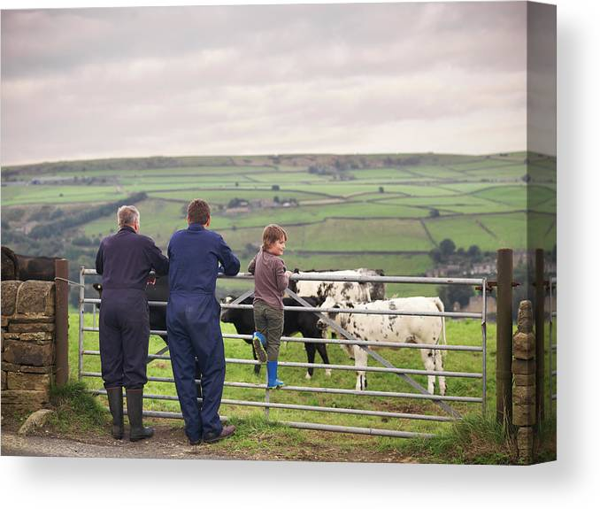 Mature Adult Canvas Print featuring the photograph Mature Farmer, Adult Son And Grandson by Monty Rakusen