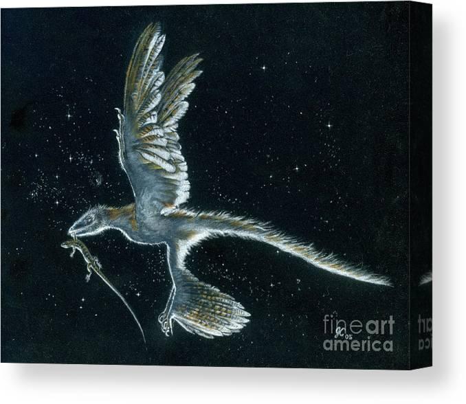 Dinosaur Canvas Print featuring the painting Moonlight hunt - Microraptor by Julius Csotonyi