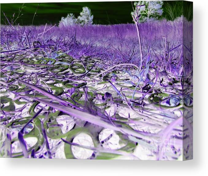 Abstract Canvas Print featuring the photograph Pop Art a06 by Rrrose Pix