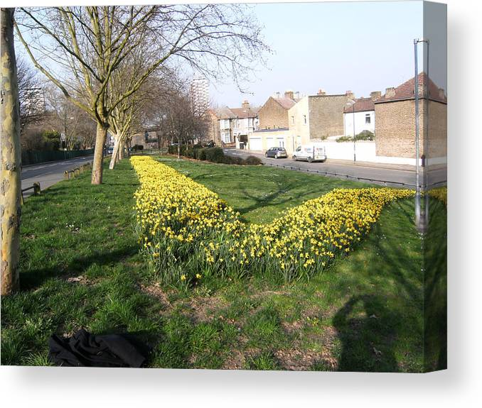 Nature Canvas Print featuring the photograph ONE SUMMER DAY - 2014 At UPPER ROAD - Plaistow by Mudiama Kammoh