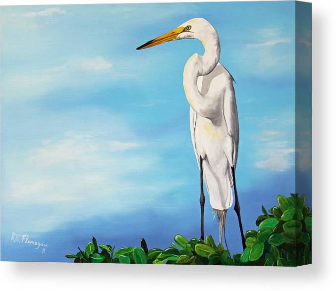 Bird Canvas Print featuring the painting Snowy Egret by Ruben Flanagan