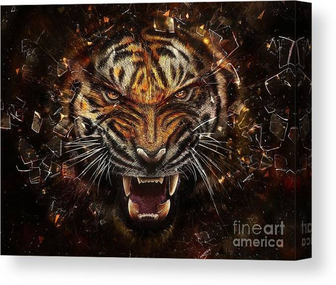 Tiger Art Poster and Canvas
