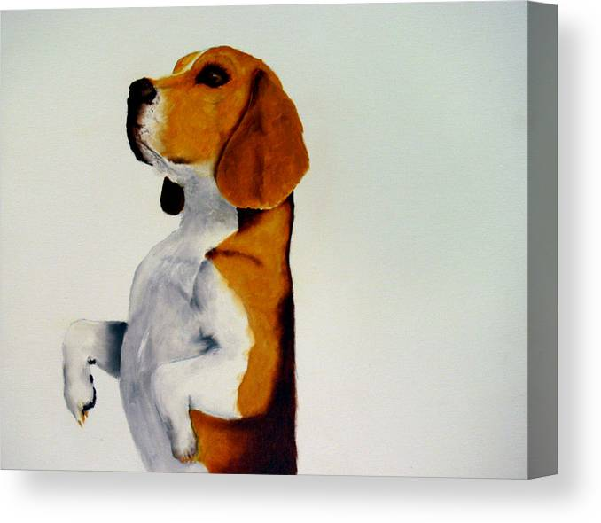 Beagle Canvas Print featuring the painting Beagle by Dick Larsen