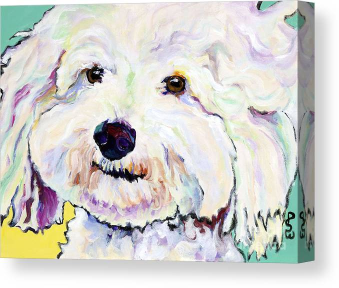 Bischon Canvas Print featuring the painting Buttons  by Pat Saunders-White