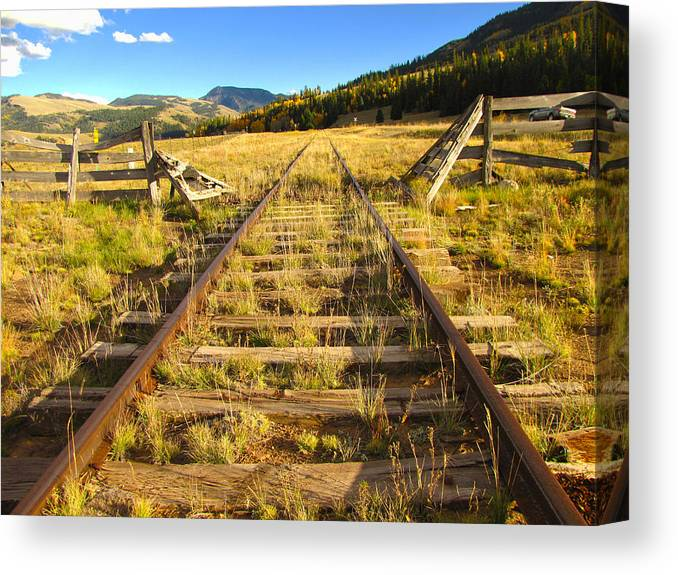 Train Canvas Print featuring the photograph Cattle Track Guard by Carol Milisen