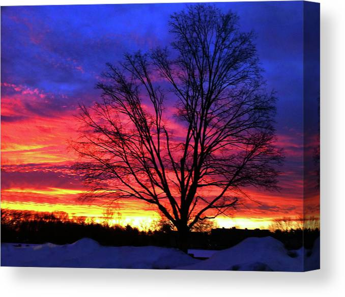 Sunrise Canvas Print featuring the photograph Driveby Shooting No. 8 - Valentine's Sunrise by Christine Segalas