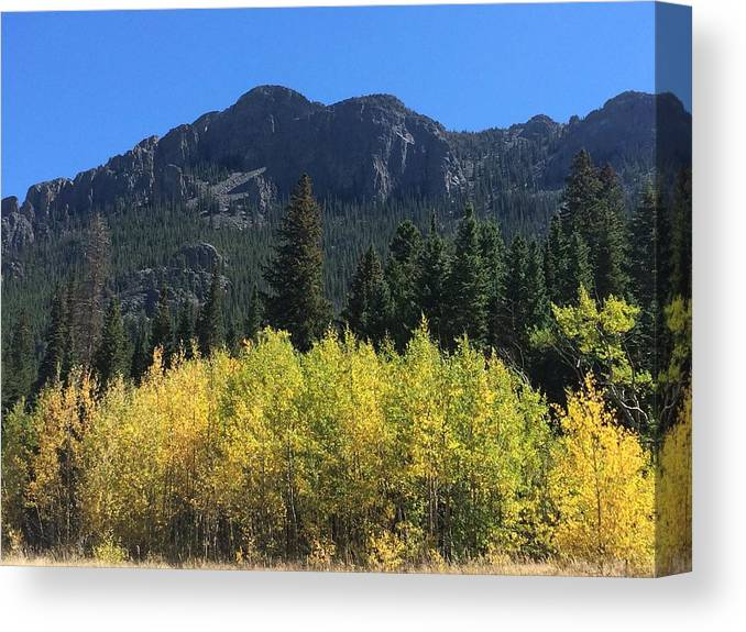 Landscape Canvas Print featuring the photograph Fall at Twin Sisters by Kristen Anna