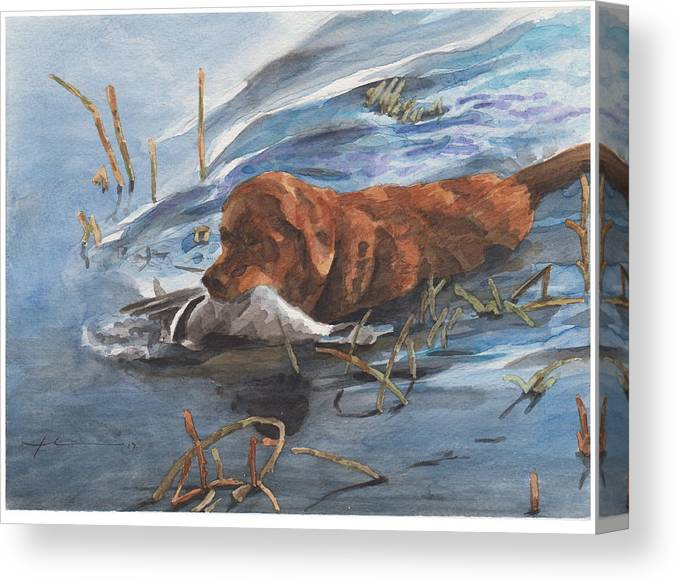 Www.miketheuer.com Golden Retriever With Duck Watercolor Portrait Canvas Print featuring the drawing Golden Retriever With Duck by Mike Theuer