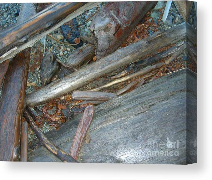 Driftwood Canvas Print featuring the photograph Harrisson Driftwood by Jim Thomson