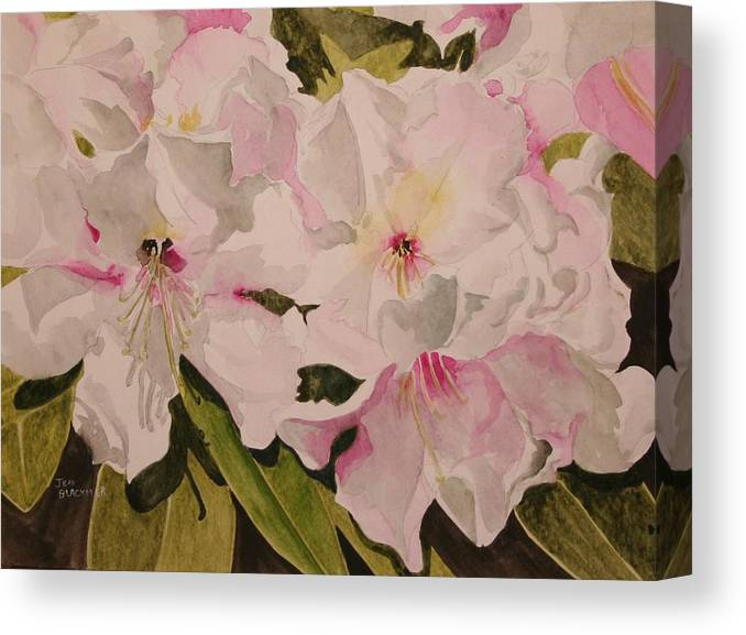 Pink Canvas Print featuring the painting In The Pink by Jean Blackmer