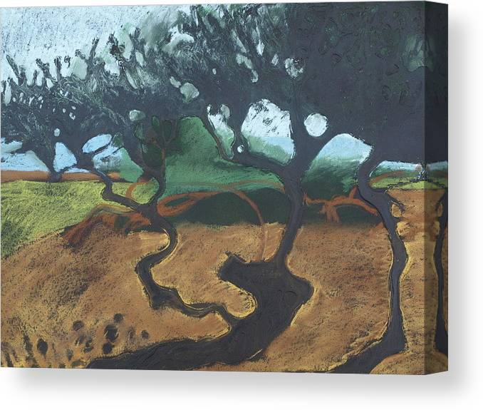 Contemporary Tree Landscape Canvas Print featuring the drawing La Jolla I by Leah Tomaino