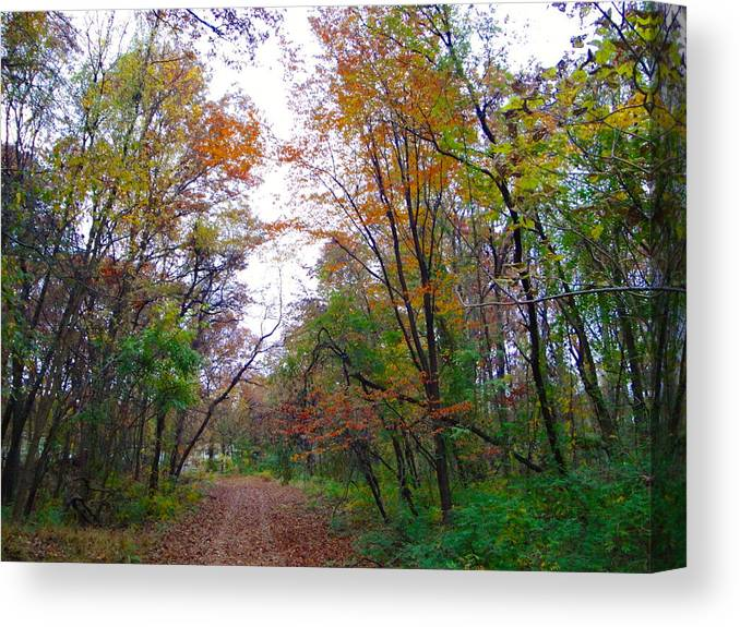 Autumn Landscape Canvas Print featuring the photograph Nature's Expression-4 by Leonard Holland