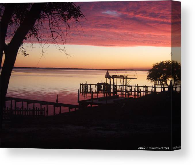 Silhouette Canvas Print featuring the photograph Silhouettes by Nicole I Hamilton
